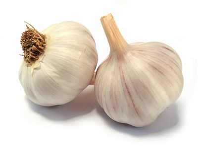 Picture Of Garlic For Vampires